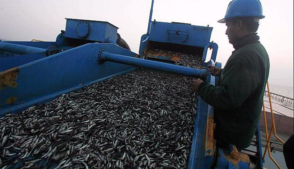 El avance de la manufactura se debe al excelente año de la pesca en 2018, dijo el titular del Prdouce. (Foto: GEC)