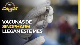 Primer lote de vacunas Sinopharm llega en enero