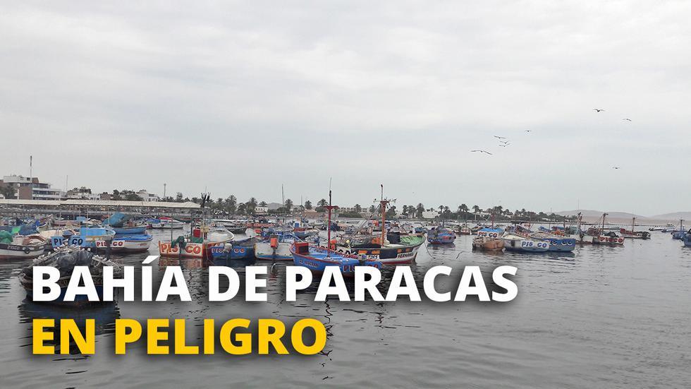 Bahía de Paracas en peligro
