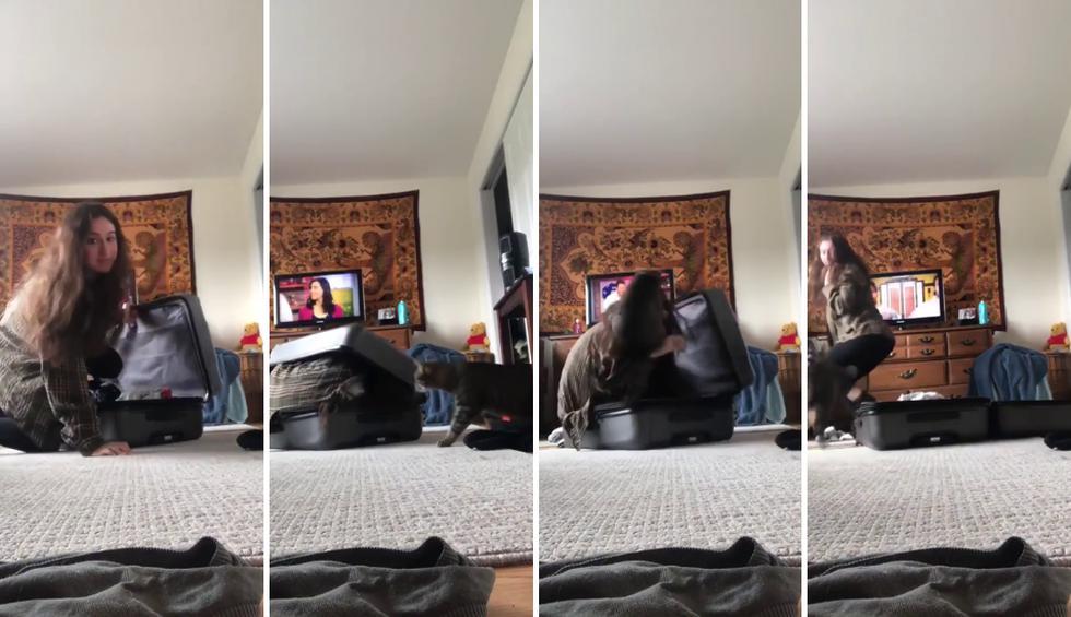 El gato se asustó tanto al ver a su propietaria en esa posición que no supo como reaccionar y la atacó. (Fotos: Caters Clips en YouTube/Caters News)