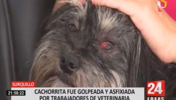 Una mujer denunció que su perrita fue maltratada en el interior de la veterinaria 'Kokovet', ubicada en el distrito de Surquillo. (Foto: 24 Horas)