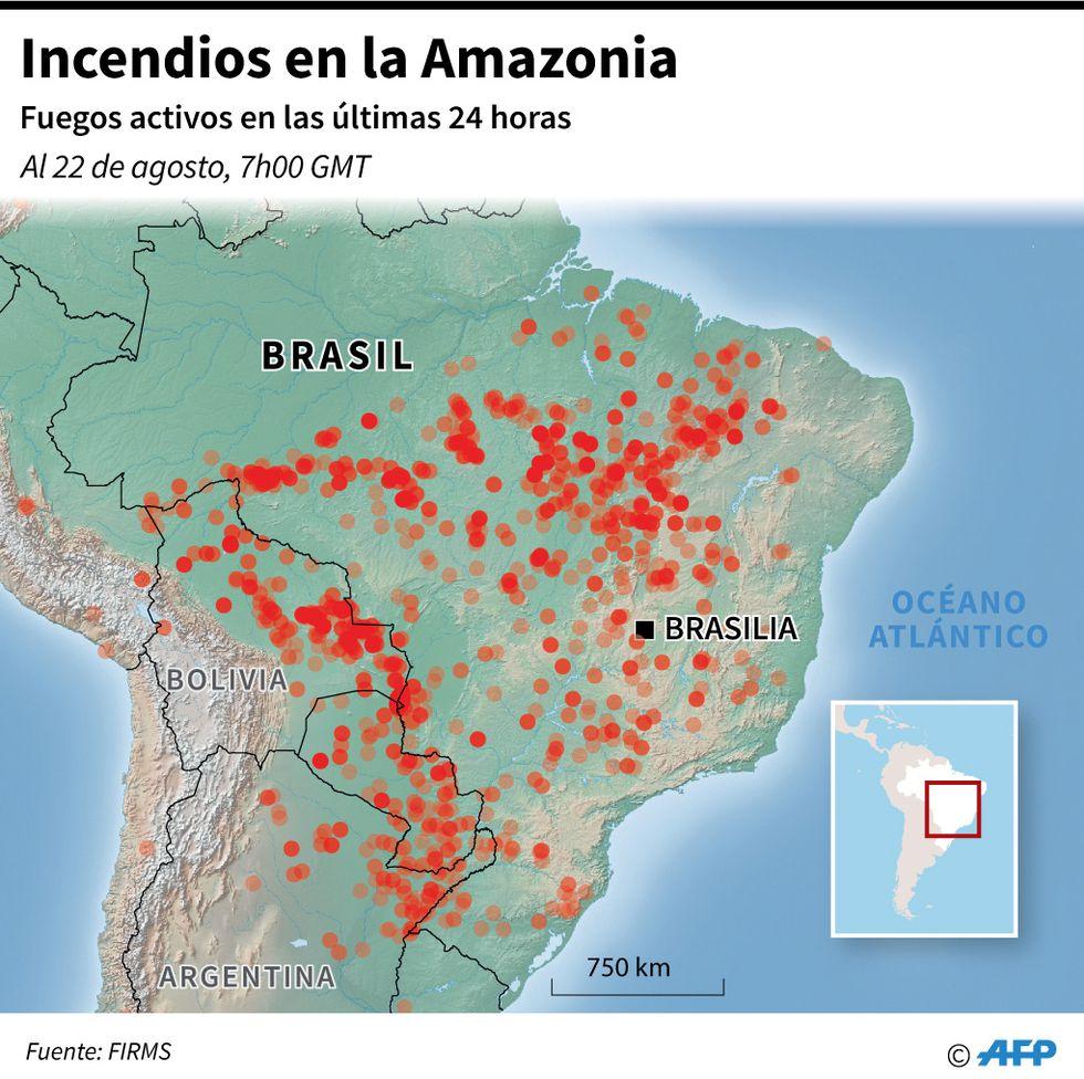 Mapa localizando los incendios en la Amazonia en las últimas 24 horas. (AFP)
