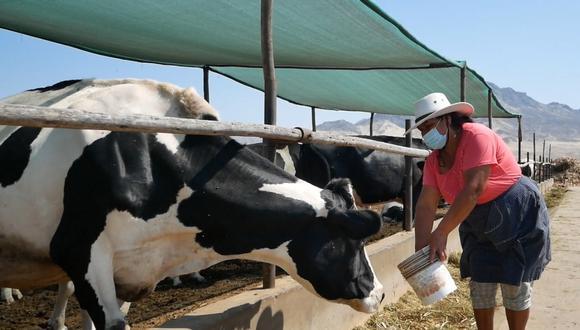 El acceso al crédito permitirá impulsar la producción y transformación de productos ganaderos.