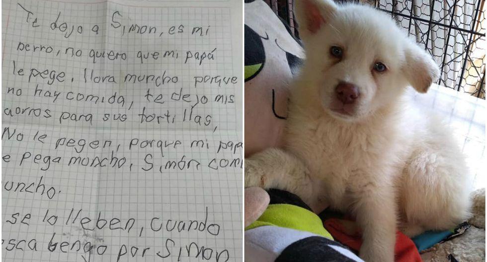 El perrito fue encontrado en una caja de cartón junto a un peluche y una conmovedora carta que se viralizó en redes sociales. (Foto: Facebook)