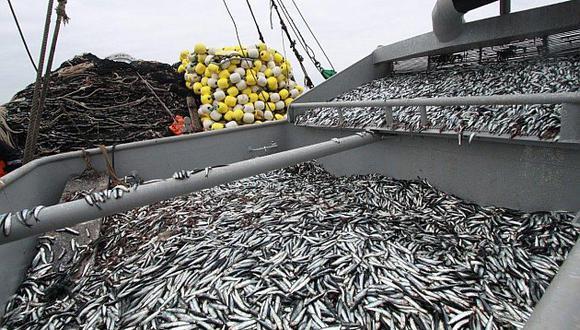 La producción del sector Pesca aumentó 3.43% por efecto de la mayor captura de especies para consumo humano directo. (USI)