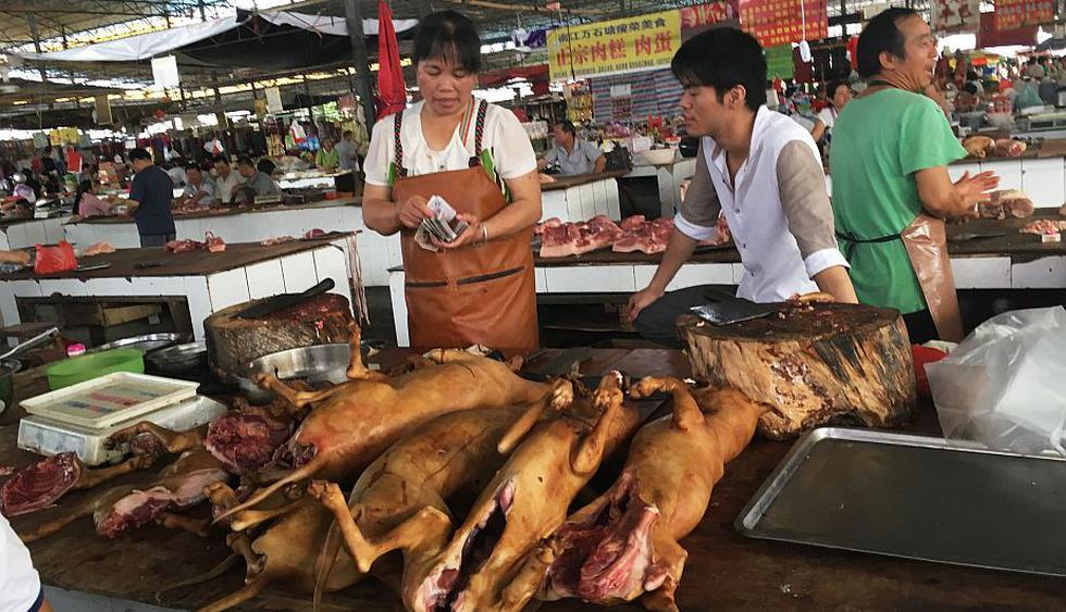 Polémico Festival de carne de perro en Yulin genera gran rechazo internacional. (AFP)