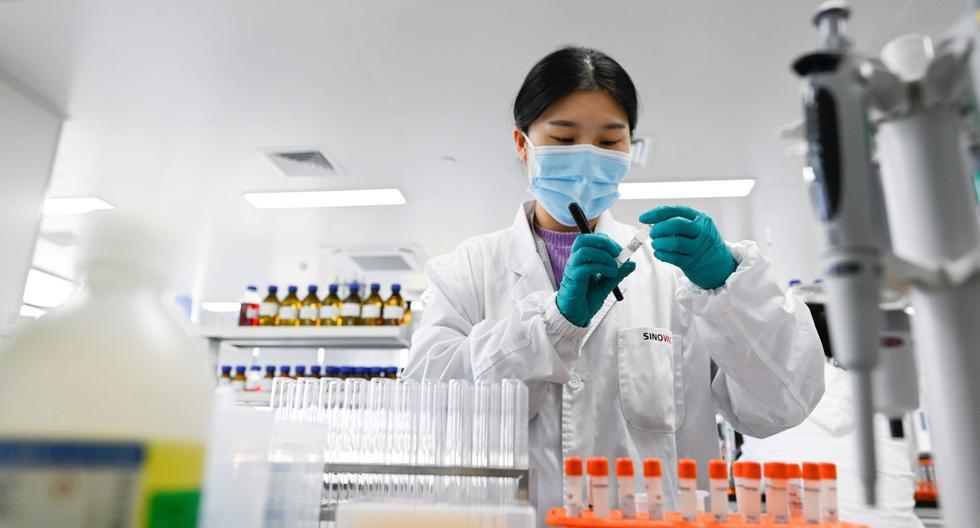 Una ingeniera trabaja en la fábrica construida para producir una vacuna contra el coronavirus (COVID-19) de Sinovac. (AFP / WANG ZHAO).