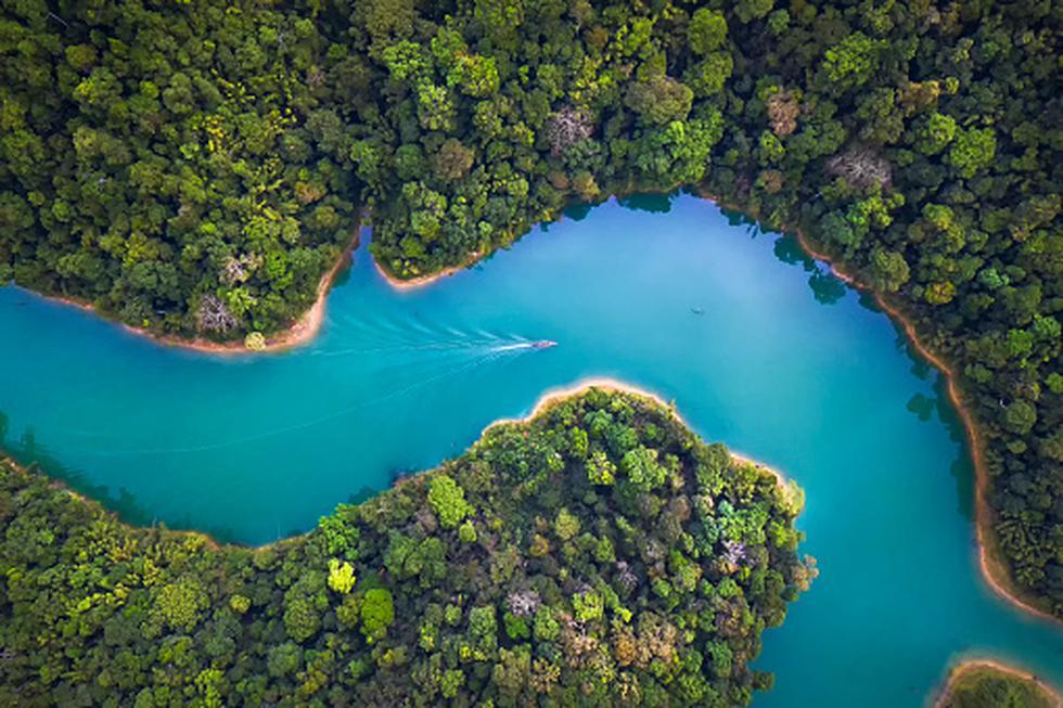 Medio Ambiente (Foto: Getty)