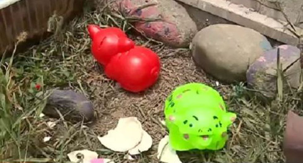 Roban en nido de Carabayllo. (América Noticias)