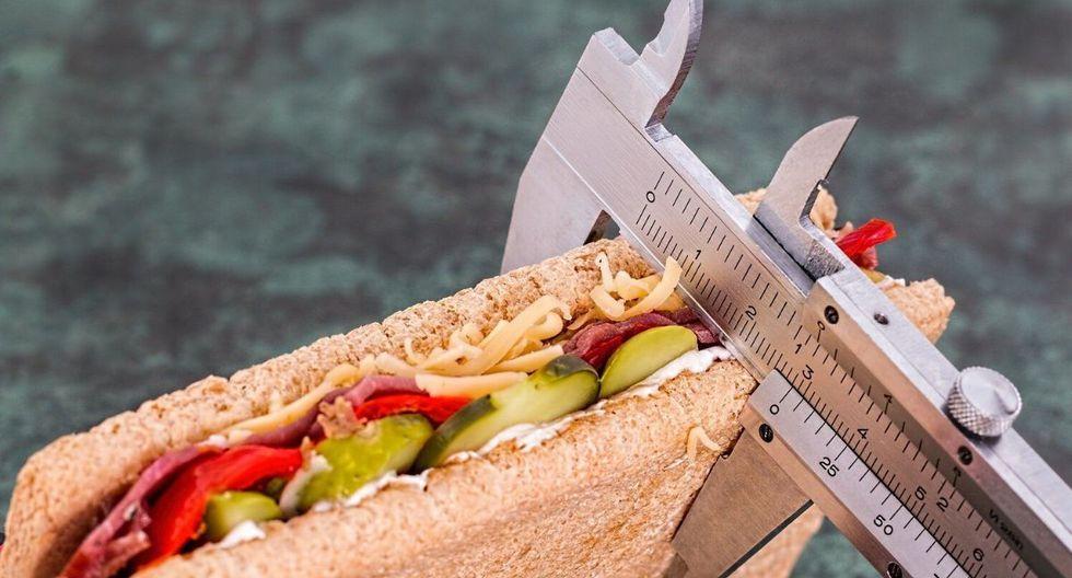 Con una alimentación baja en grasas y carbohidratos podrás volver a tu peso. (Foto: Pixabay)