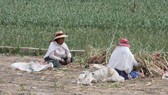 Ministerio de Agricultura aprobó la Política Nacional Agraria. (Peru21)