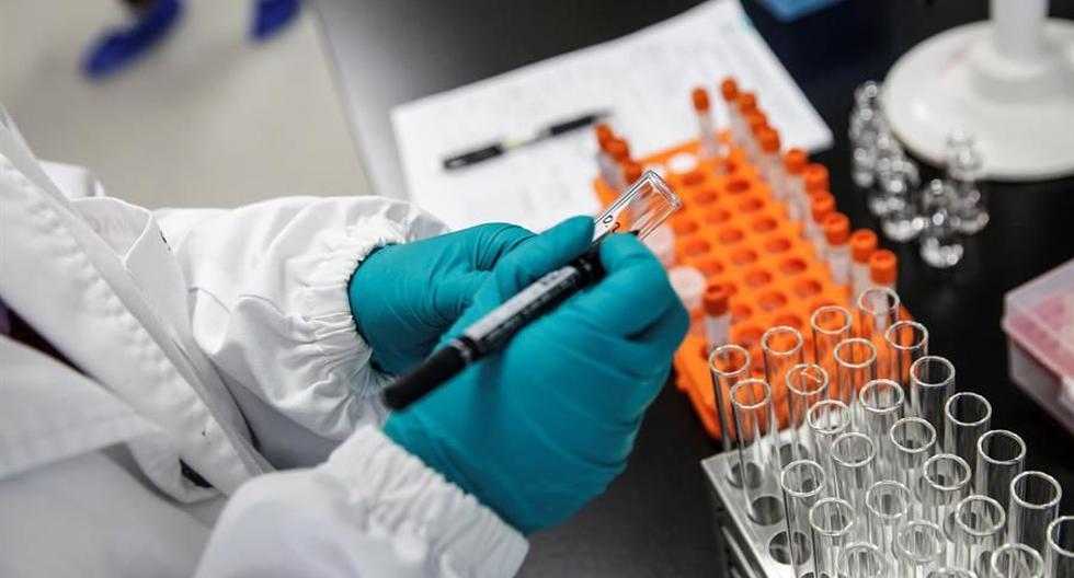 """Imagen referencial. La vacuna ha sido desarrollada por el doctor Pere-Joan Cardona, del Servicio de Microbiología de Can Ruti, y se basa en la denominada """"inmunidad innata entrenada"""". (EFE)."""