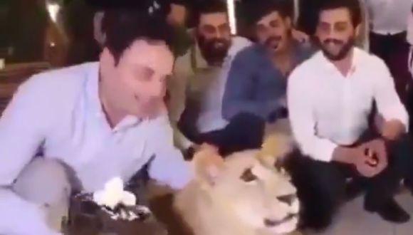 Twitter: Hombre que da tortazo en la cara de una leona genera indignación. (Twitter)
