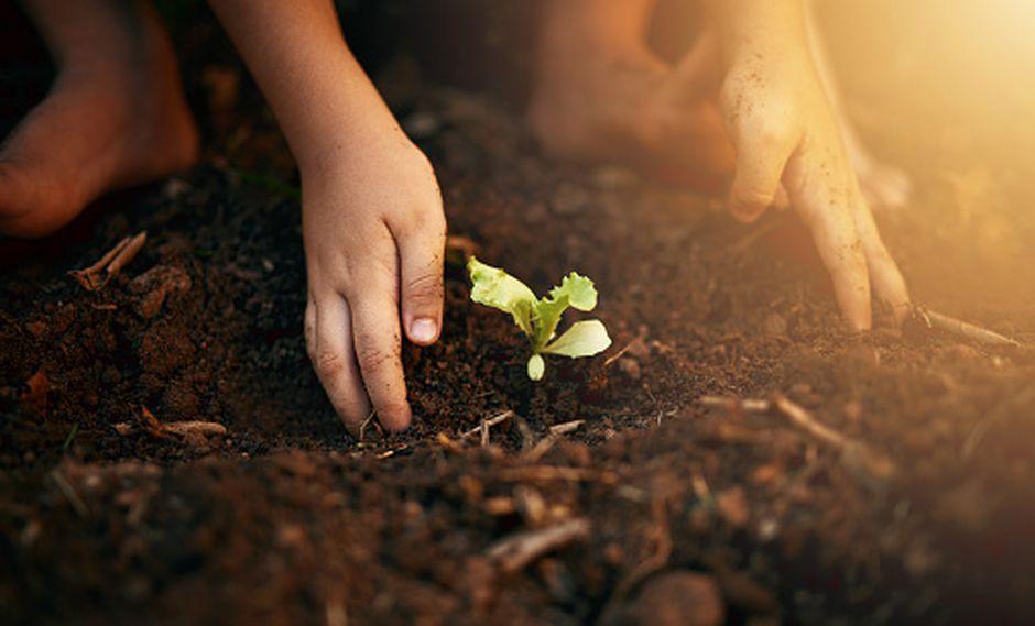 Los menores cada vez son más conscientes  con el cuidado del medio ambiente. (GETTY)