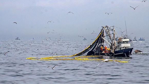 El agro y la pesca apuntalarán el PBI. (Foto: Produce)