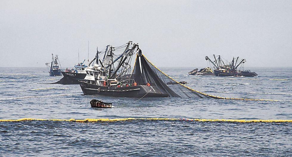 Ministerio de la Producción: Pesca se concentra en la costa de La Libertad y Áncash. (USI)