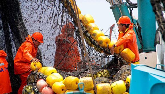 Desembarque de anchoveta representó el 87.5% del total. (Foto: Produce)