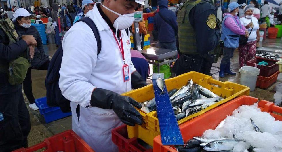 Los productos hidrobiológicos que se encontraban en buen estado fueron donados. (Produce)