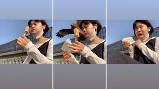 Águila sorprende y roba alimento a distraída jovencita