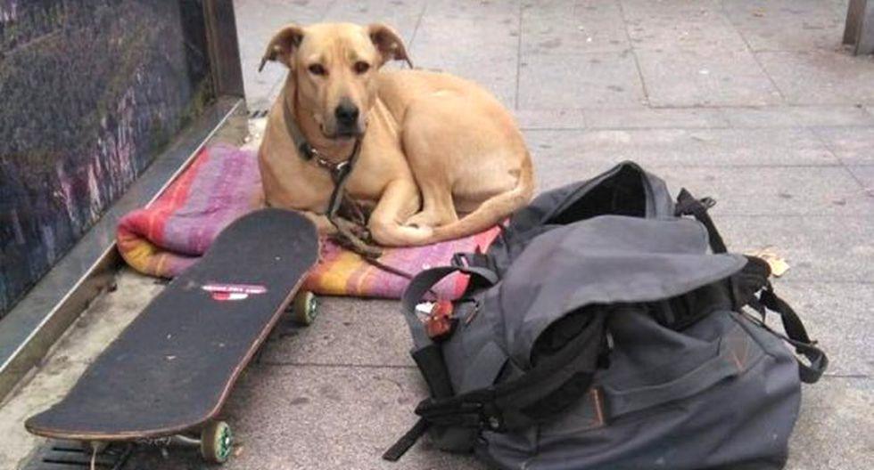 """El Partido Animalista Contra el Maltrato Animal organizó una manifestación por el asesinato del perro, conocido como """"Sota"""". (Foto: Twitter/@PartidoPACMA)"""