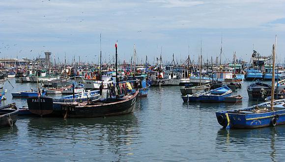 Empresas de harina de pescado extraerían no sólo anchoveta, sino jurel, caballa y ejemplares juveniles. (USI)