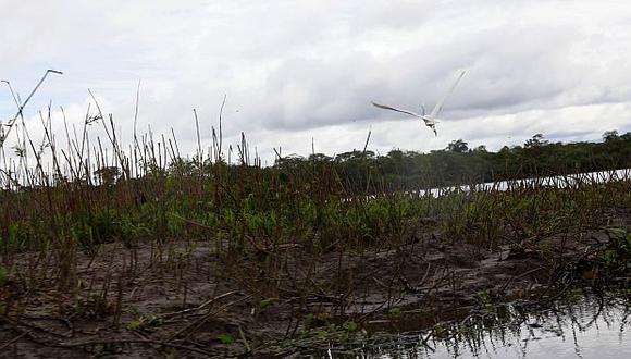 Contamana tiene como atractivos turísticos fuentes de aguas sulfurosas y ferrosas, así como el Lago Chía Tipishca. (Foto: Mincetur)<br>