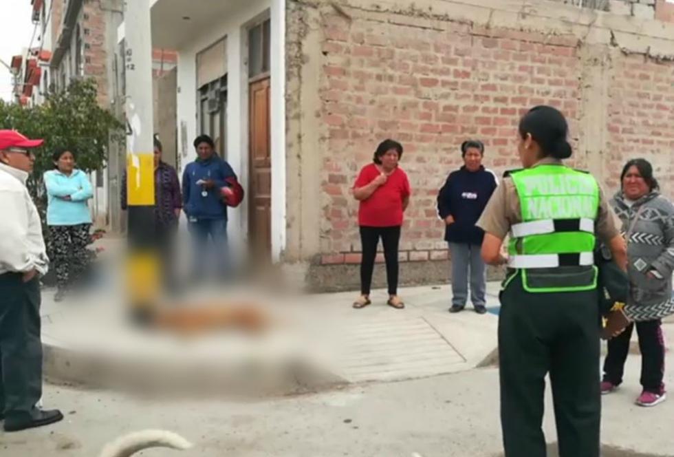 Sujeto asesina con su arma a perros en Tacna. (USI)