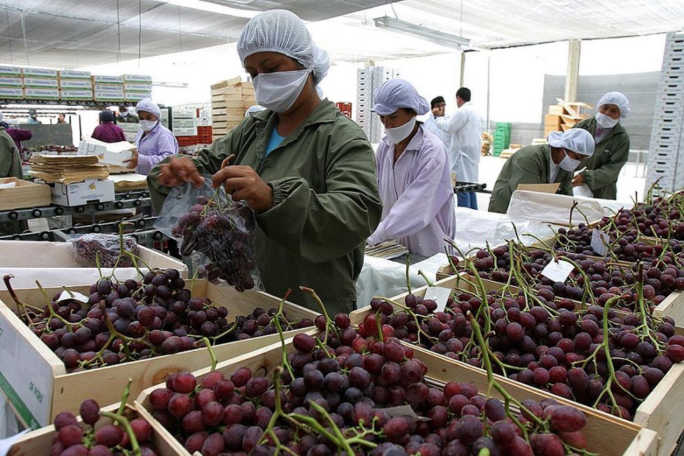 La Unión Europea es el tercer destino de las exportaciones peruanas, después de China y Estados Unidos. (Foto: MINCETUR/Difusión)