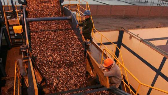 AL ALZA. Sector pesquero atenuó la caída de algunas ciudades. (USI)