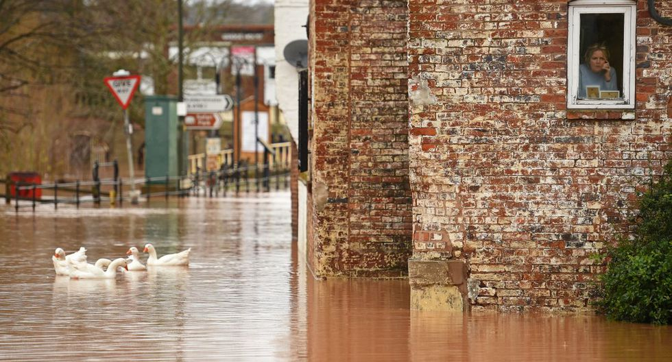 """A woman looks out of her window as geese swim past in floodwater after the River Severn bursts it's banks in Bewdley, west of Birmingham on February 16, 2020, after Storm Dennis caused flooding across large swathes of Britain. - As Storm Dennis sweeps in, the country is bracing itself for widespread weather disruption for the second weekend in a row. Experts have warned that conditions amount to a """"perfect storm"""", with hundreds of homes at risk of flooding. (Photo by Oli SCARFF / AFP)"""