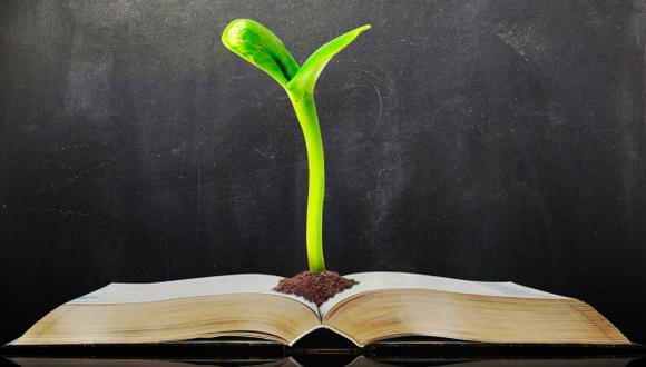 El futuro profesor debe contar con habilidades interpersonales bien desarrolladas y ser el líder. (USI)