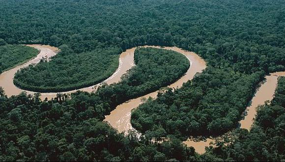El Perú tiene más de un 50% de su territorio cubierto con bosques. (Difusión)