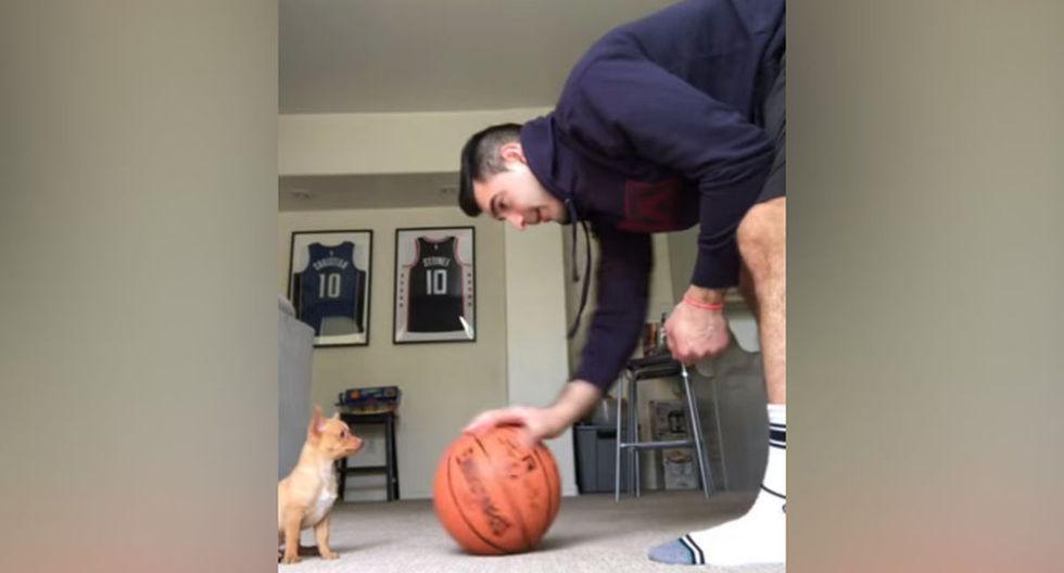 En primera instancia, el dueño del can le acercó a su mascota una pelota de baloncesto. (YouTube: ViralHog)