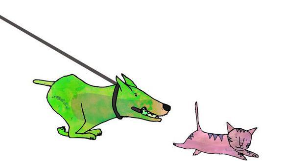 Los perros y los gatos son mascotas útiles para aumentar la actividad física de sus dueños.