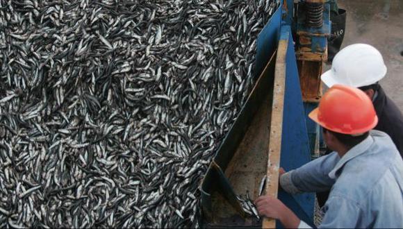 CUESTIONADA RESTRICCIÓN. Produce no pudo sustentar medida contra armadores pesqueros. (USI)