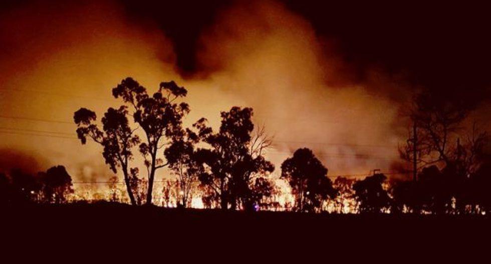 Las elevadas temperaturas han provocado 138 incendios, según los últimos datos, que arden sin control desde hace varios días en Queensland. (Foto: EFE)
