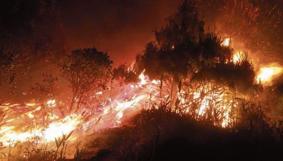 Áncash: cifra de incendios forestales durante el 2020 duplica a la del año pasado (Foto referencial)