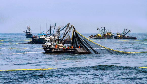 La pesca de anchoveta será suspendida. (Foto: Produce)