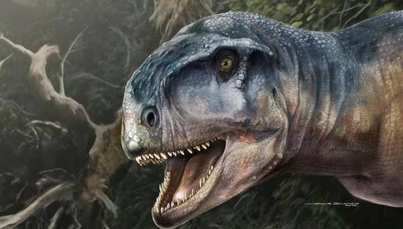 Llukalkan habitaba un ambiente semiárido con un clima estacional, cazando una variedad de dinosaurios herbívoros. (Foto: Journal of Vertebrate Paleontology)