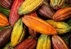 Conoce los mejores chocolates del Perú:  Scrap & Chocolates y Cacaosuyo