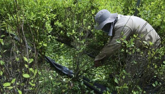 Colombia incrementó en más de un 50% la producción de cocaína, advirtió la ONU. (Reuters)