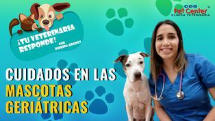 Cuidados en las mascotas geriátricas