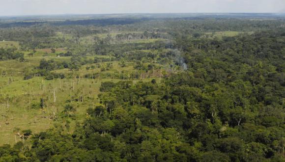Deforestación en la Amazonía peruana se redujo en 4.1 %, según el Minam (Foto: Cortesía Natura   archivo GEC)