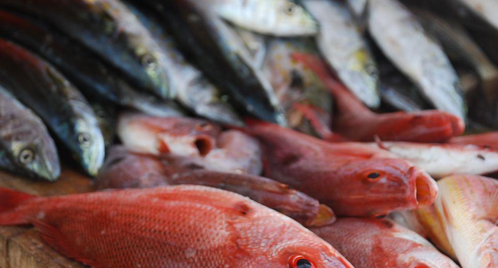 Semana Santa: No solo en estas fechas se debe consumir pescado (Difusión)