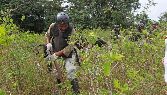"""""""No solo es erradicar, sino debe darse un balance con el desarrollo"""", señaló Masías. (Foto: Perú 21)"""