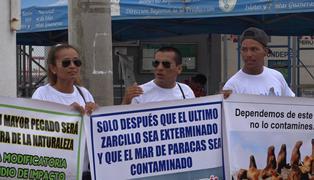 Stefan Austermühle: SENACE desaprueba construcción de almacén de concentrados en bahía de Paracas