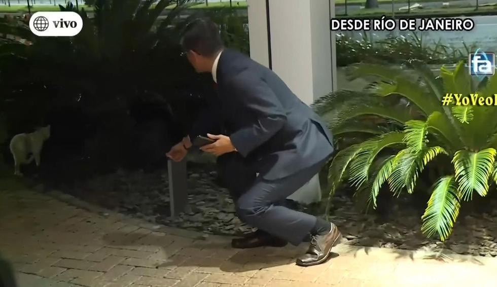 Erick Osores se retiró del enlace en vivo para jugar con un gato. (Captura de TV)