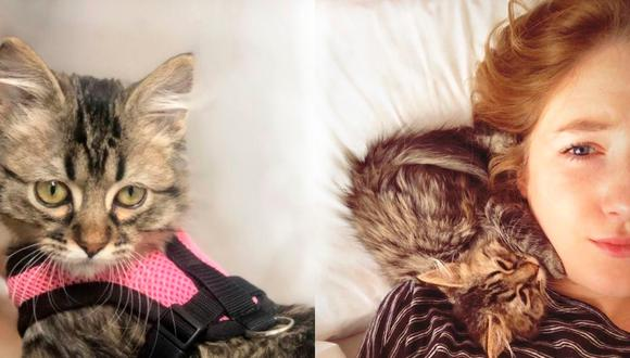 Selena y su gato Lee en una batalla por la vida y el amor.