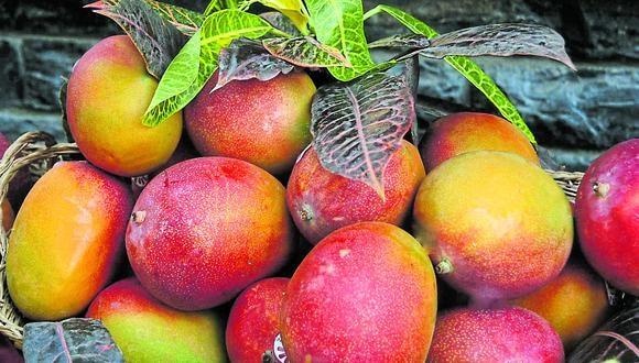 En enero del 2016 las empresas nacionales despacharon mango fresco por US$248,000 y se logró concluir dicho año con envíos por US$2.3 millones. (Foto: GEC)
