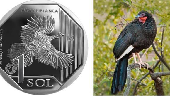 La moneda hace alusión a la pava avilbanca. (Imagen: BCR)